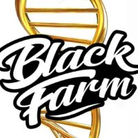 BlackFarm Genetix
